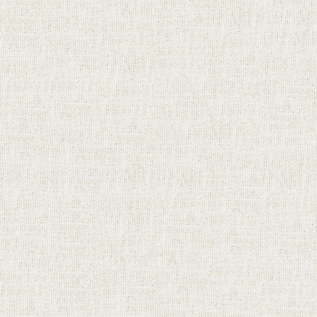 Casual Ivory Upholstery Fabric