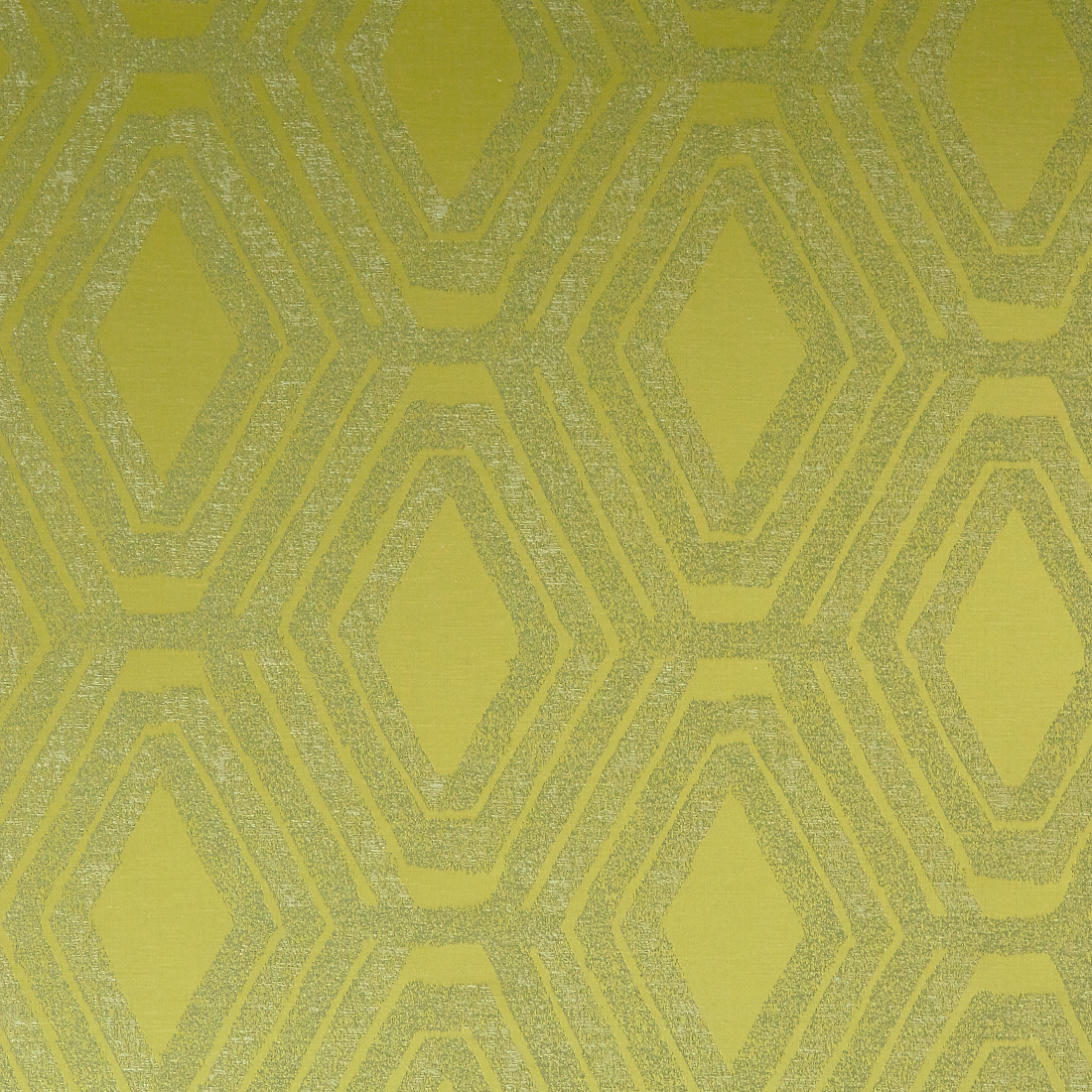 horizon mimosa