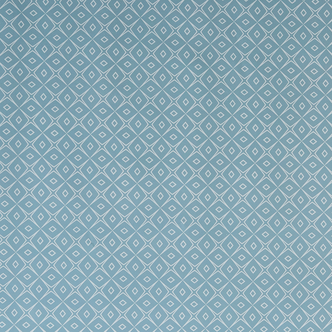 Manolo Blue Oil Cloth