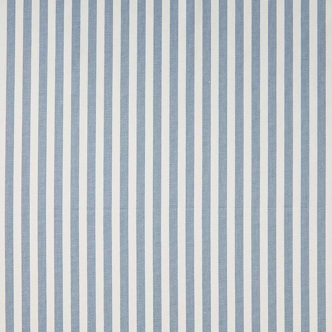Party Stripe Chambray